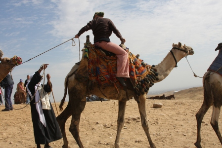 Camel riding on the Giza Plateau