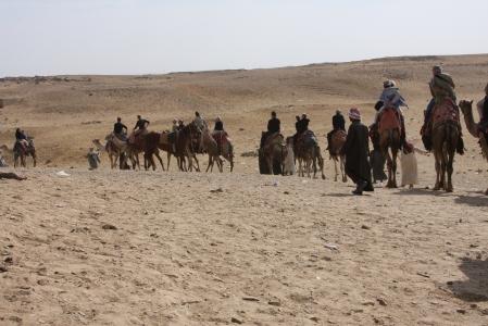 The group rides at Giza